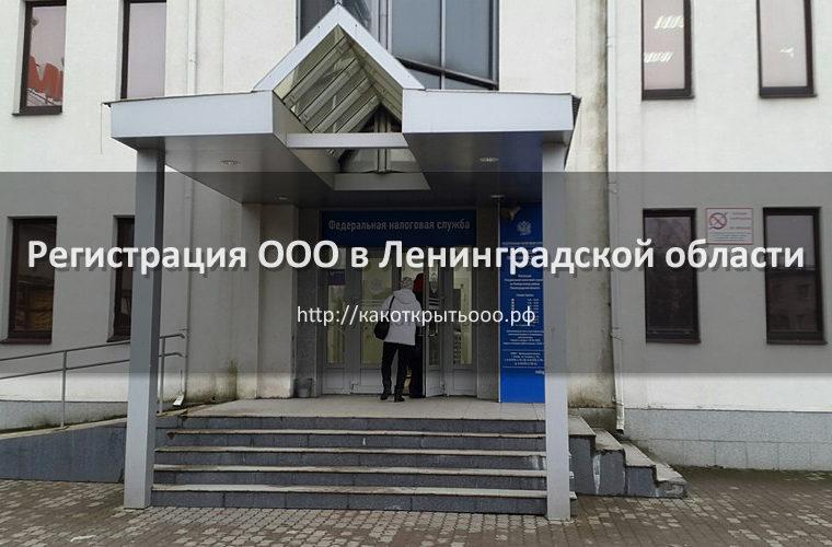 Как открыть ООО в Ленинградской области под ключ